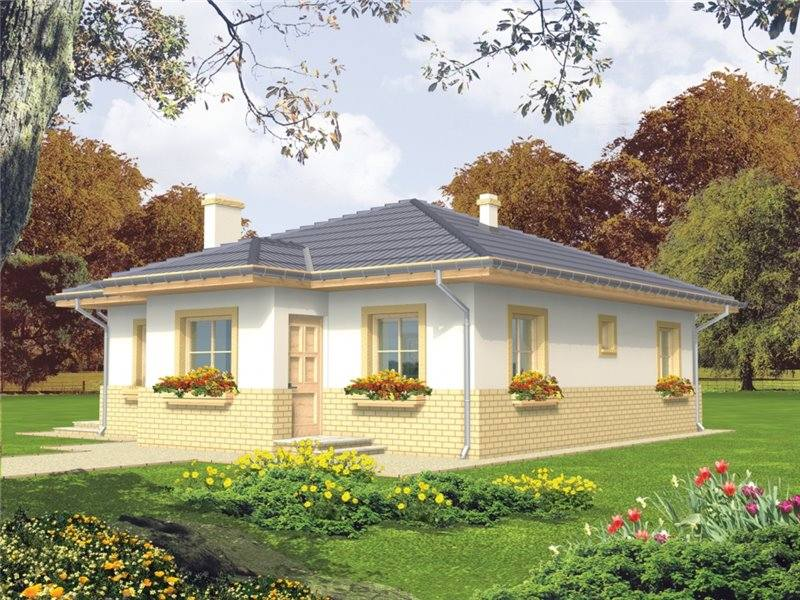 Picture of Serene Traditional Bungalow House Design